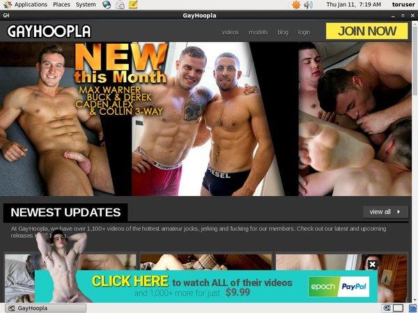 Gay Hoopla Passworter